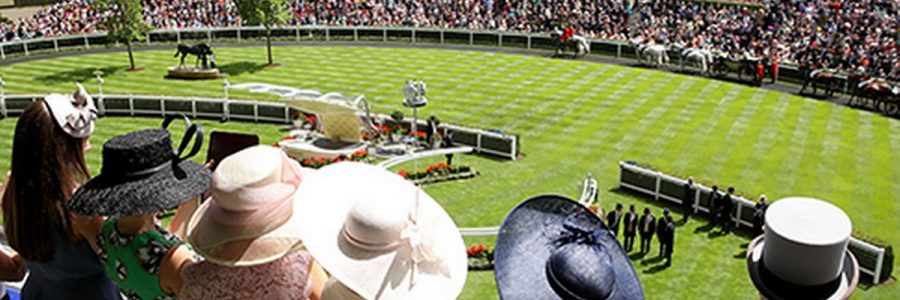 THE Queen, Royal Ascot, Fizz, Racing and Traffic